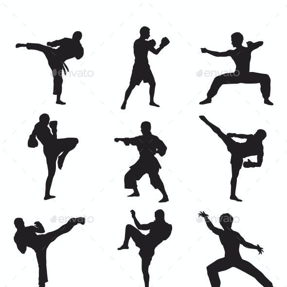 Martial Arts Graphics, Designs & Templates from GraphicRiver