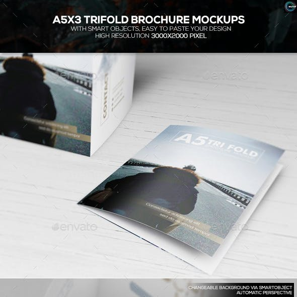 trifold mock up graphics designs templates from graphicriver