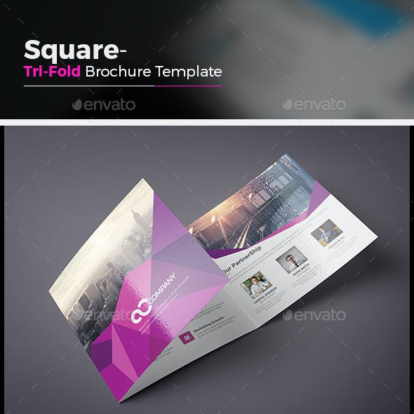 informative brochure graphics designs templates page 3
