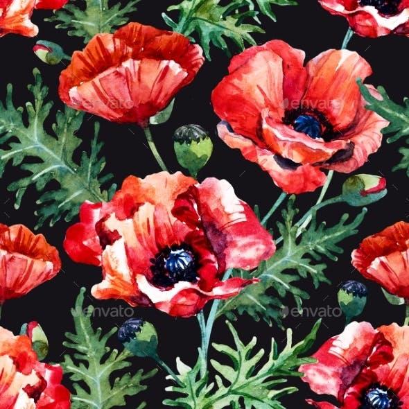 Watercolor Poppy Flower Pattern By Zenina Graphicriver