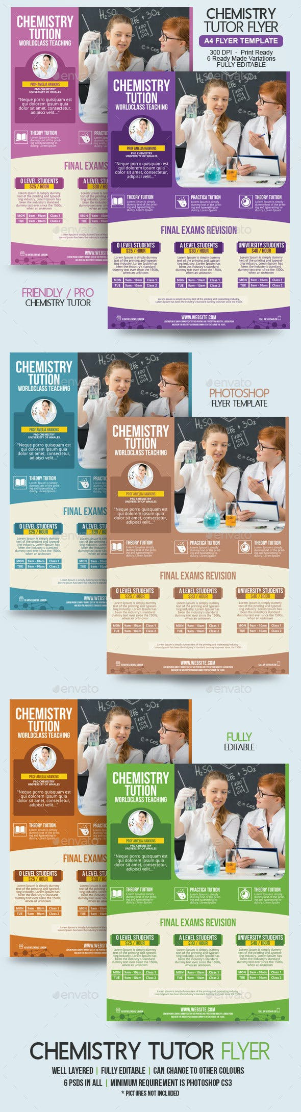chemistry teacher flyer template by blogankids graphicriver
