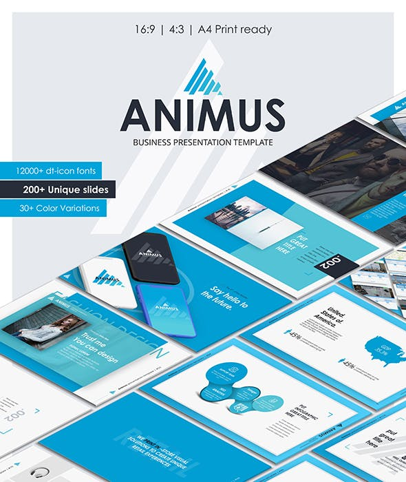 Animus Powerpoint Presentation Template By Designball Graphicriver