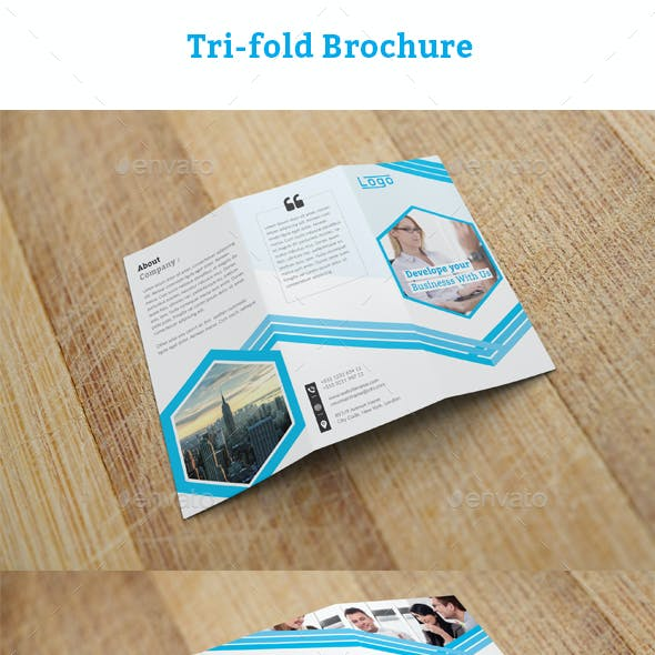 Tri Fold Business Card Templates Designs From Graphicriver