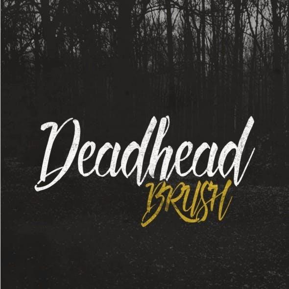 deadhead datingroommate speed dating nyc