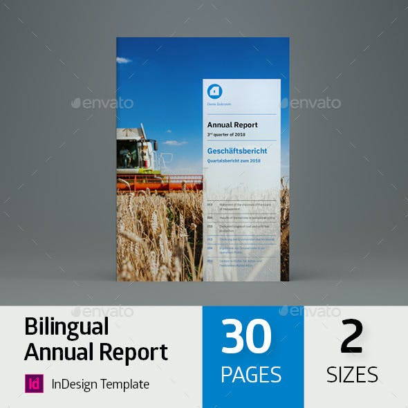 annual report and informational flyer templates