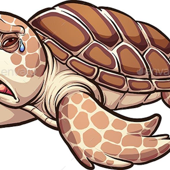 Sea Turtle Graphics Designs Templates From GraphicRiver