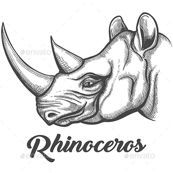 rhinoceros graphics designs templates from graphicriver