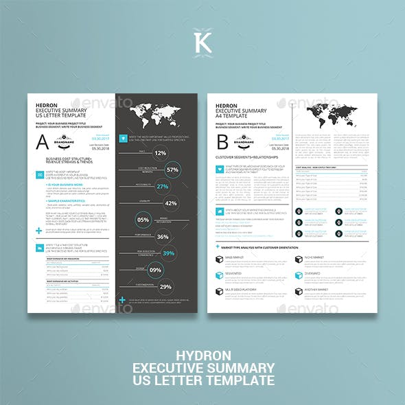 executive summary graphics designs templates